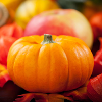Fall Pumpkins Jigsaw Puzzle