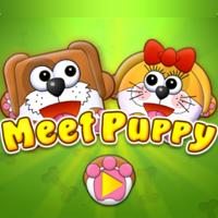 Meet Puppy